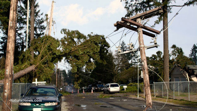 Storm-Damage-Power-Lines